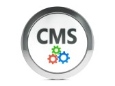 cms-database-website