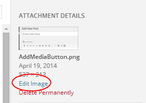 Edit Image Within A Post