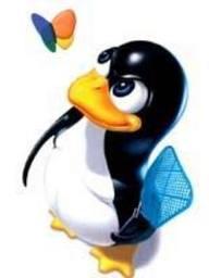 shared-linux-hosting
