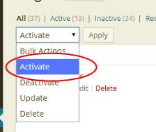Bulk Activate