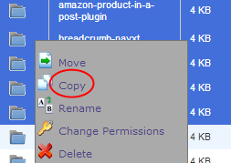 Copy Option