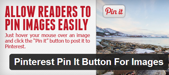 Pinterest Pin it Logo
