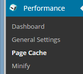 Page Cache