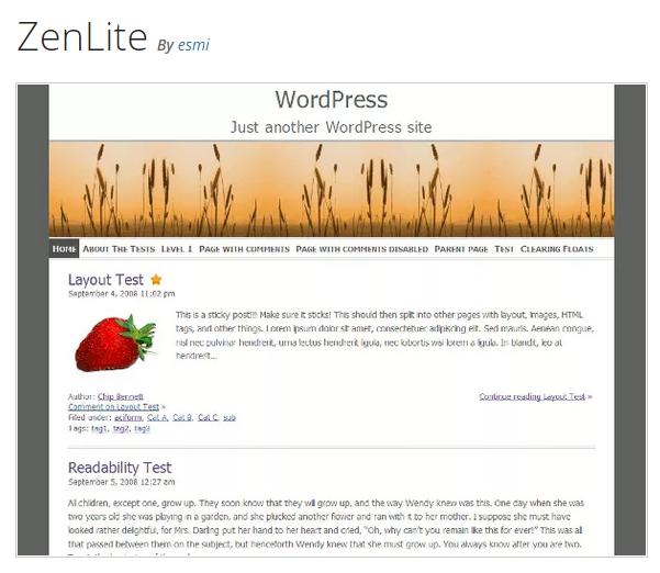 ZenLite