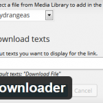 Simple File Downloader