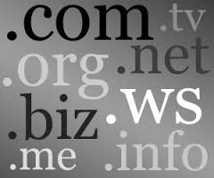 Domains for Business