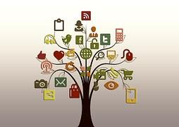 Up-and-Coming Social Platforms