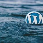 WordPress Drop Down