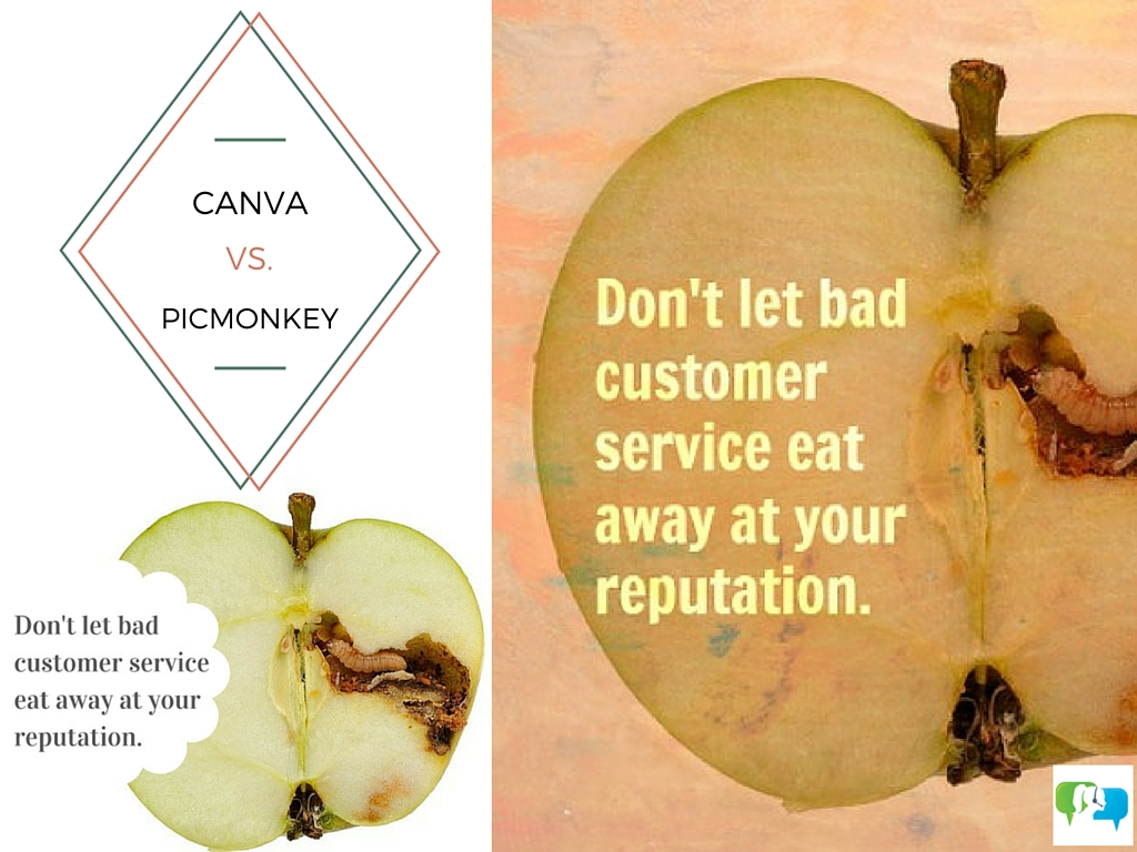 what's the best graphic design tool canva or picmonkey