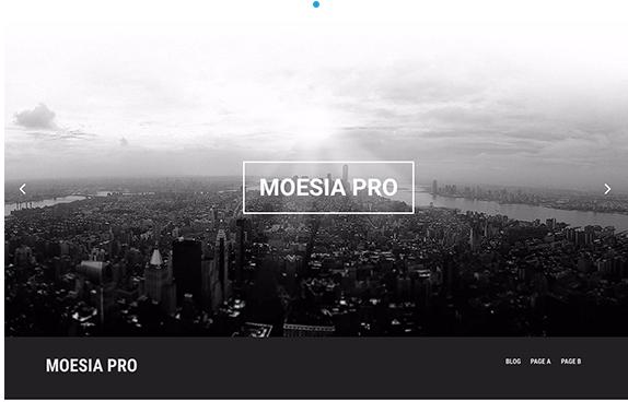 MoesiaPro